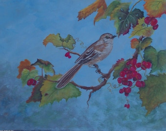 Tennessee Mockingbird in the grapes