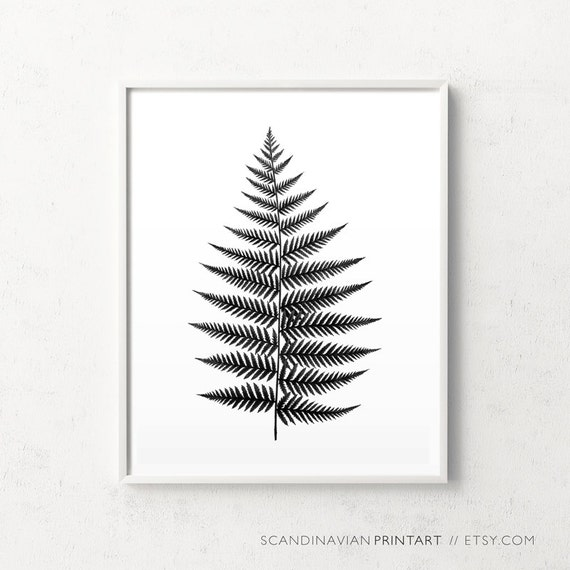 Botanical black white leaf print botanical print fern leaf