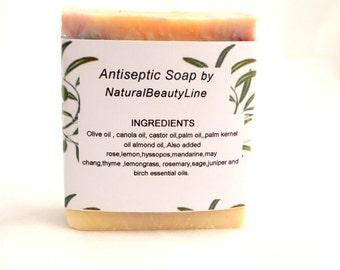 Antiseptic Soap  - All Natural Handmade Soap . Against Wrinkles Soap . Organic Homemade Soap . Nourishing Soap . Family Soap