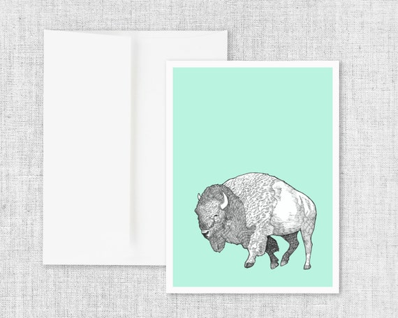 "buffalo drawing greeting card, modern greeting card, blank greeting card, greeting card set, american bison art, ink drawing, art - ""Bison"""