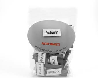 Autumn Poetry Magnets - Refrigerator Word Quote Magnets - Free US Shipping