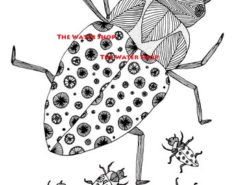 Roach Bugs Coloring Page - Roach Coloring Book Pages - Ornate Bugs Coloring - Adult Coloring Pages - Kids Coloring Book PDF- Zendoodle