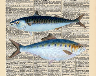 """Vintage Antique Dictionary Page with Antique Print """"Two Ocean Fish"""""""