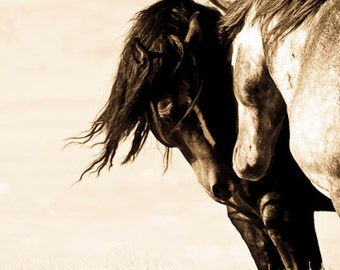 """Horse Print,Wild Horse Photo from the Mc Cullough Peaks, WY. Horse Photo, Sepia Tone """" Sweet smell of Sage """""""