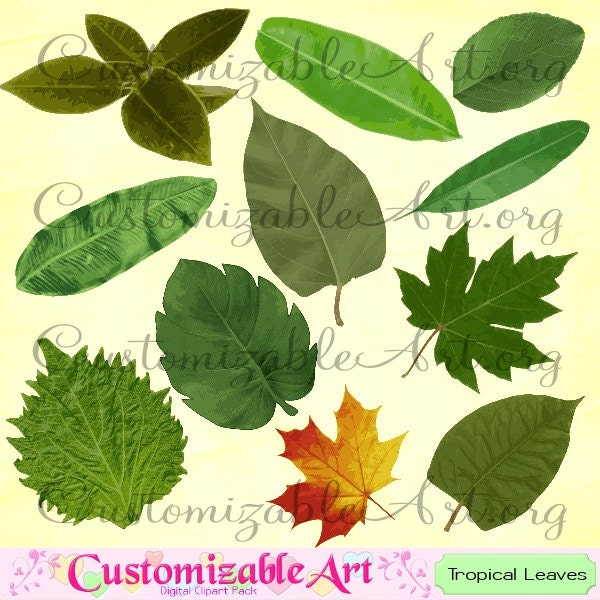 Leaf Clipart Digital Clip Art Tropical Image Tea