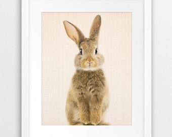 Rabbit Print, Nursery Animal Wall Art, Woodlands Animals Print, Cute Bunny Print, Baby Animal Print, Kids Room Decor, Animal Printable Art