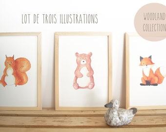 Set of 3 illustrations Woodland - watercolor prints - nursery decor kids - Fox, bear, squirrel