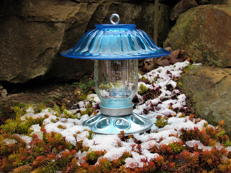 perky window ip bird en birdscapes clear feeders canada feeder pet walmart blue