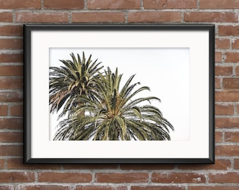 Double Palm Tree Photograph, Palm Tree Print, Tropical Print, Green Leaves, Palms, Digital Print