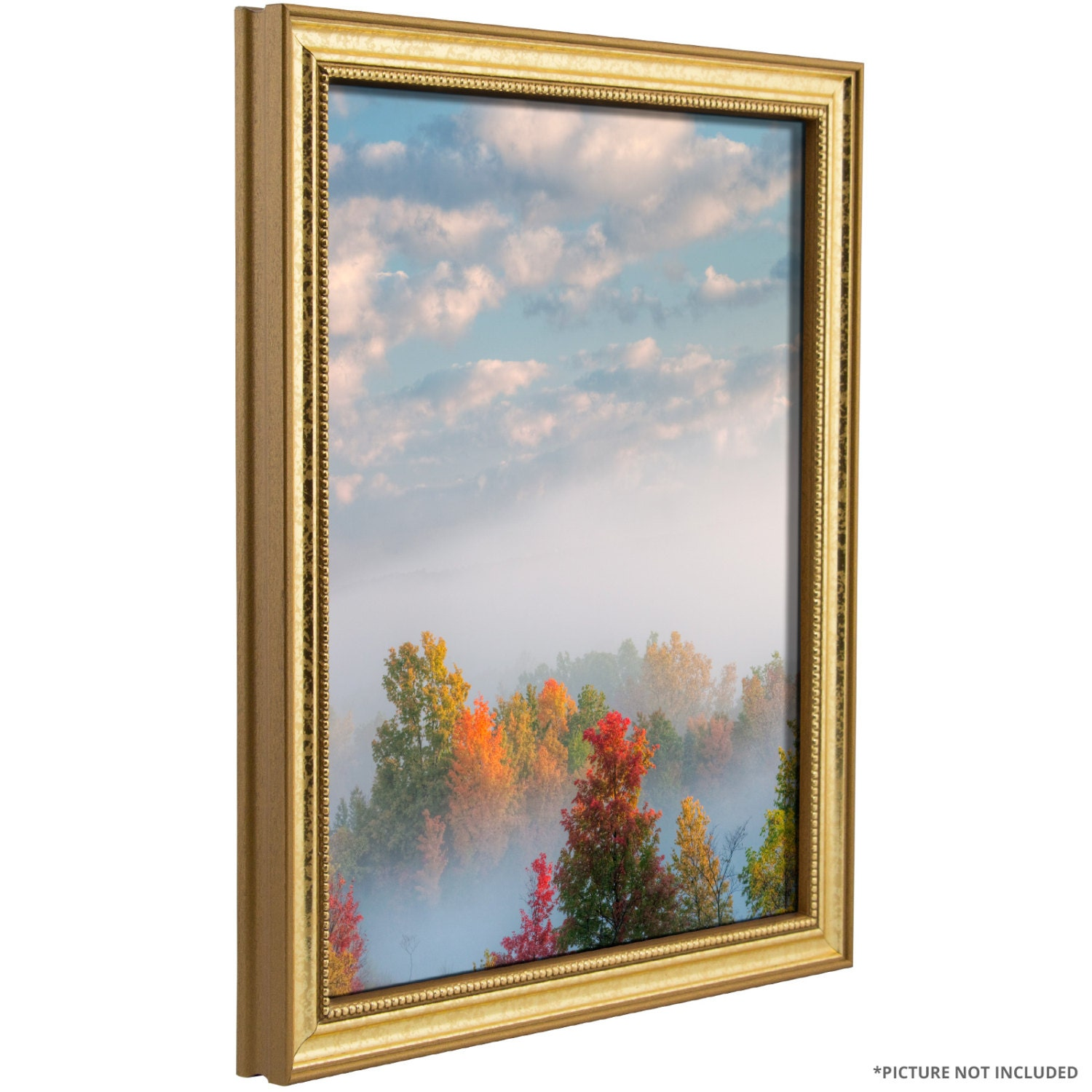 Craig Frames, 20x24 Inch Aged Gold Picture Frame, Stratton .75\