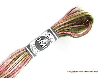DMC 4500 Coloris Variegated 6 Strand Floss Ancolie des Jardins (Columbine Gardens)