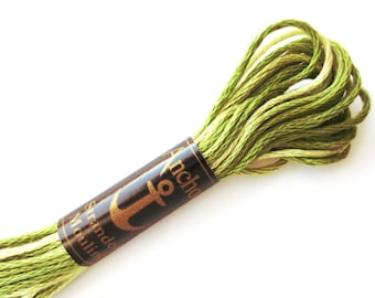 Anchor 1216 Variegated 6 Strand Floss Celery Seed Ombre