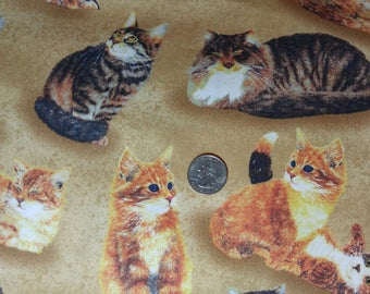 Fabric BTY Cats Sew Curious by Wilmington Prints