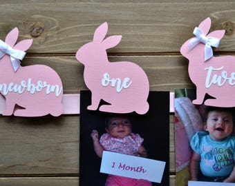 Bunny Photo Banner - Some Bunny is One - Some Bunny is One First Birthday - Bunny First Birthday - Bunny Banner - 12 Month Photo Banner