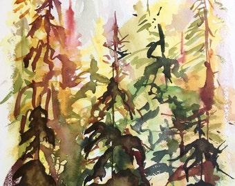 Golden Cedars, 2016 - Original Watercolour