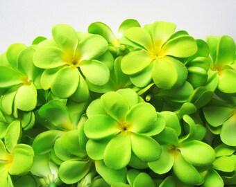 100 Green Plumeria Frangipani Heads - Artificial Silk Flower - 3 inches - Wholesale Lot - for Wedding Work, Make Hair clips, headbands, hats