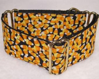 "Martingale Collar, Candy Corn, Martingale Collar, 2"" Inch, Whippet Martingale Collar, Greyhound Martingale Dog Collar Orange/Yellow/White/Bk"