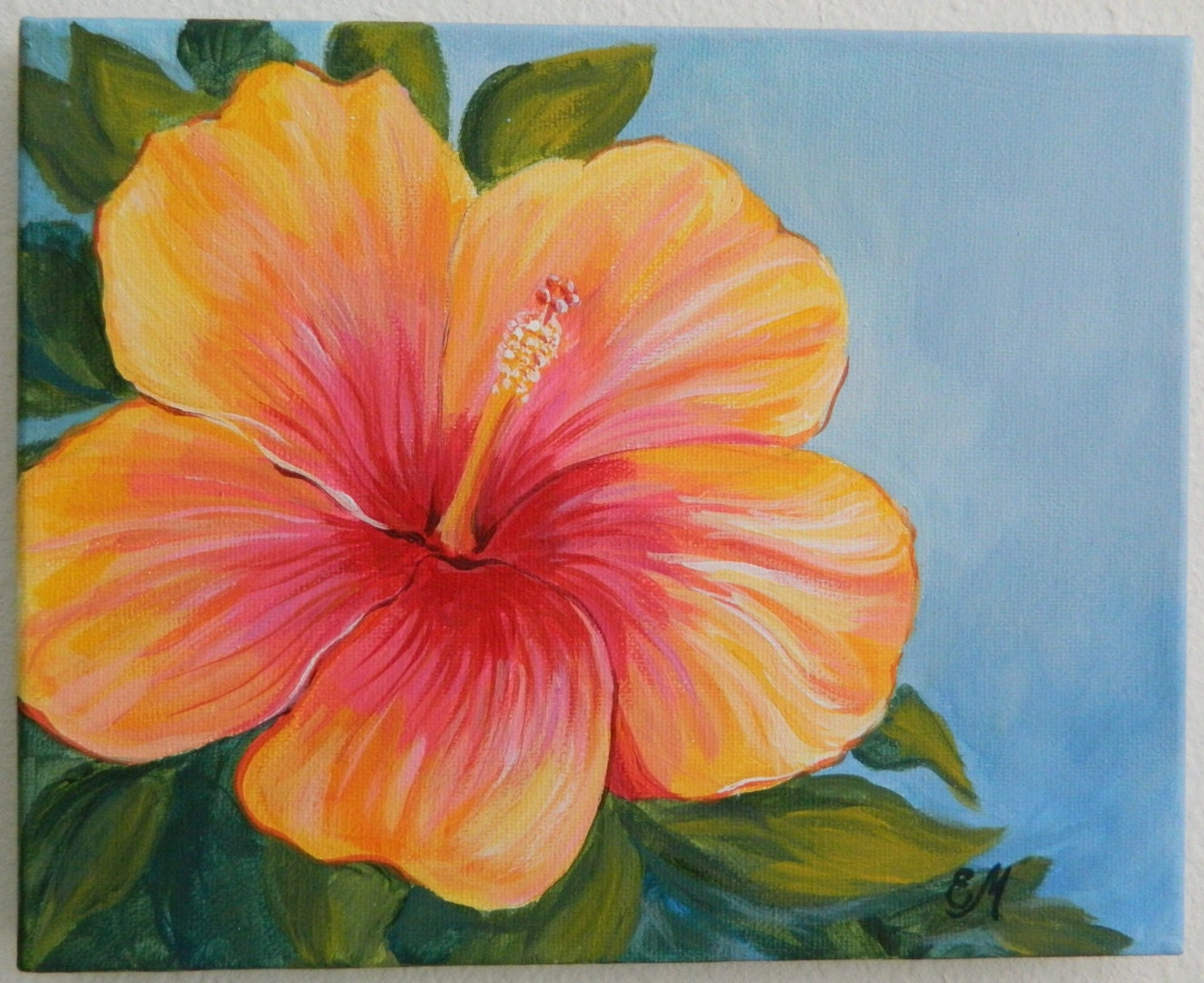 Hibiscus Flower Painting Images