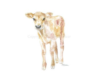 Jersey Cow Calf Watercolor Painting - Large Print - 20x16