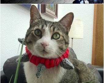 """SPIKED PET COLLAR Crochet Dog Cat - Humorous - Made to order - up to 14"""" neck"""