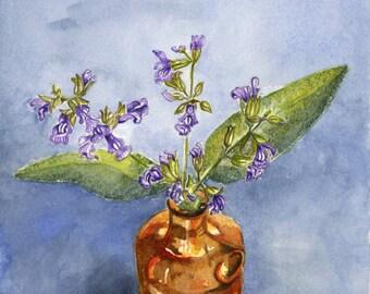 Sage, Floral watercolor, fine art print,