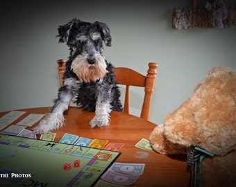 Playroom Decor - Pet Photography - Dogs playing boardgames - Adorable Dog Photos - Portrait Photography - Wall Art