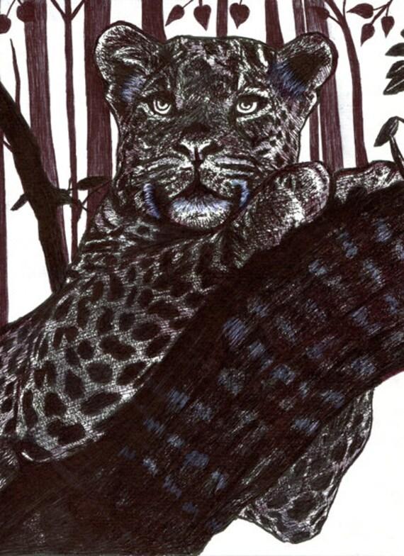 leopard in tree drawing original art pen ink animal illustrations black and white nature wildlife art