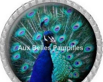 Round Cabochon 25 mm epoxy resin - beautiful Peacock Pendant (1136)