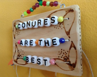 Hanging BIRD TOY / SIGN: 'Conures Are The Best'
