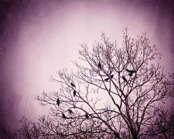 ?zoom & Purple Wall Art birds tree black dark wall art pink nature