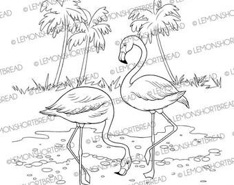 Digital Stamp Flamingo, Digi Download, Flamingoes Summer, Tropical Birds, Graphic, Clip Art, Coloring Page, Scrapbooking Supplies
