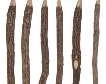 6 Wood TWIG GARDEN PENCILS