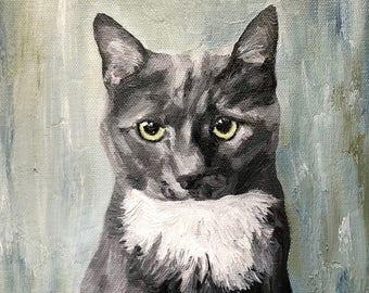 8 x 8 Custom Oil Painted Pet Portrait
