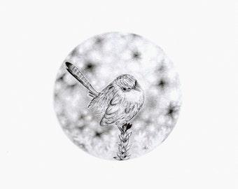 Bird pencil drawing original miniature art