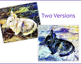 SALE Digital Art Downloads Bunny Rabbits - Long Haired Calico Baby Abstract, Baby Rabbit - 2 Versions jpg files