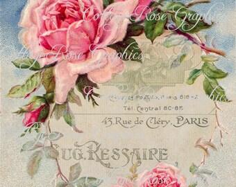 Large digital Paris Ephemera French pink roses single image BUY 3 get one FREE download