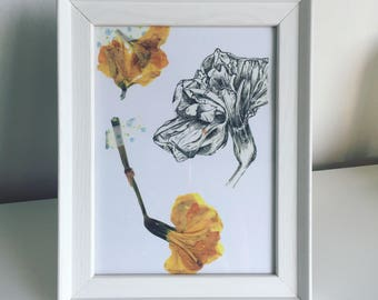 Daffodil pen illustration and pressed flower print
