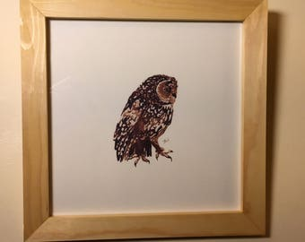Tawny Owl Painting, Tawny Owl Print, Tawny Owl Art, Tawny Owl Ink Painting, Owl Illustration, Owl Watercolour, Fine Art Print, UK Wildlife