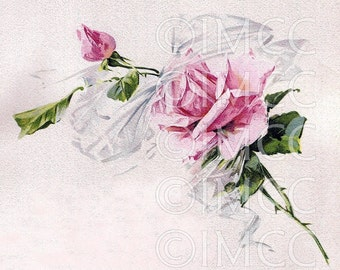 Digital Download SCAN Shabby Vintage Chic Pink Roses and Ribbons