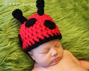 Baby Lady Bug hat