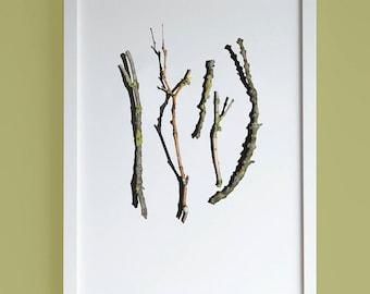 Sticks & twigs Forest print, A4 print, Botanical print, Eco-friendly print, Fine art photography print, Nordic poster