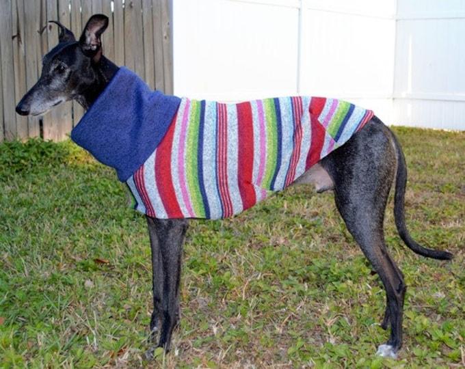 "Greyhound Sweater. ""Multi-Stripe Sweater"" - Greyhound Sizes"