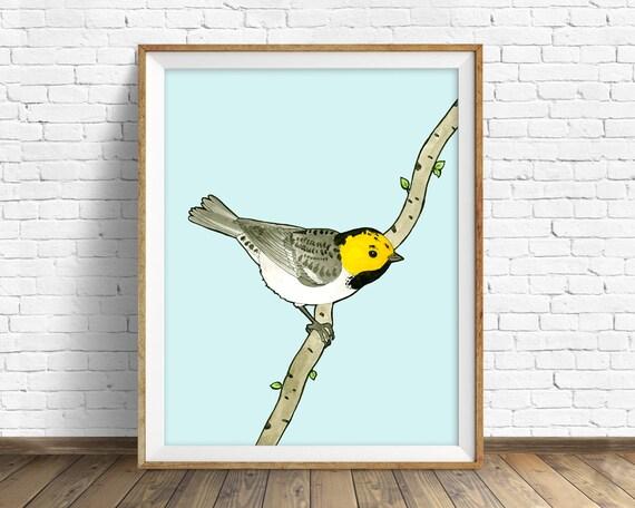 Hermit Warbler -bird, drawing, watercolor, bird print, blue, art print, wall art print, large wall art, art print, woodland wall art, nature