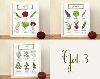 Herbs & Summer Veggies French Kitchen Wall Art - Set of 3 Food illustration art prints - 11x14