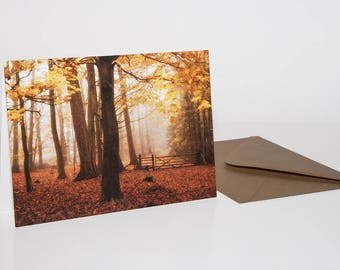 Autumn Forest Card, Woodland Photography, Forest Picture, Nature Greeting Card, Autumn Leaves, Woodland Print, Fall Card, Autumn Season