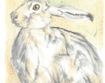 Brown hare art watercolour painting, wildlife original artwork, an original watercolour painting of a brown hare by EdieBrae