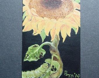 Caterpillar & Yellow Sunflower Aceo Painting Original * Free Shipping*
