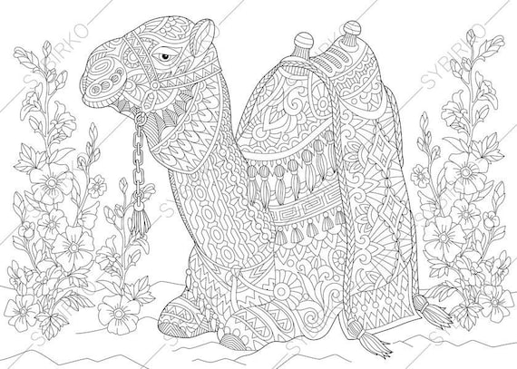 Camel. 3 Coloring Pages. Animal coloring book pages for Adults. Instant  Download Print