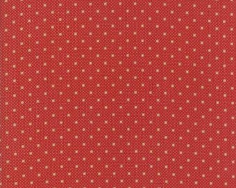 Farmhouse Reds - Dots on Dots Red by Minick & Simpson for Moda, 1/2 yard, 14855 11