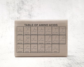 The Amino Acid Chemistry Chart Rubber Stamp - Teacher's Organic Chemistry Stamp - OChem and Biology Study Notes